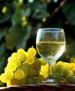 ДЕГУСТАЦИЯ ВИН «Chardonnay» ОТ РАЗНЫХ ПРОИЗВОДИТЕЛЕЙ НА 2 ПЕРСОНЫ