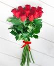 roses-60cm