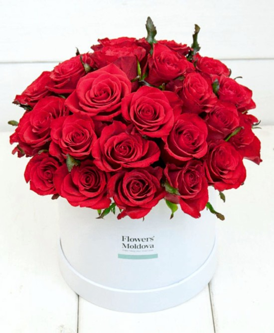 white-box-classic-red-roses-16cm-1000lei